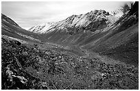 Aquarius Valley near Arrigetch Peaks. Gates of the Arctic National Park, Alaska, USA. (black and white)