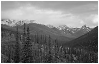 Arrigetch Peaks from Arrigetch Creek entrance at sunset. Gates of the Arctic National Park, Alaska, USA. (black and white)