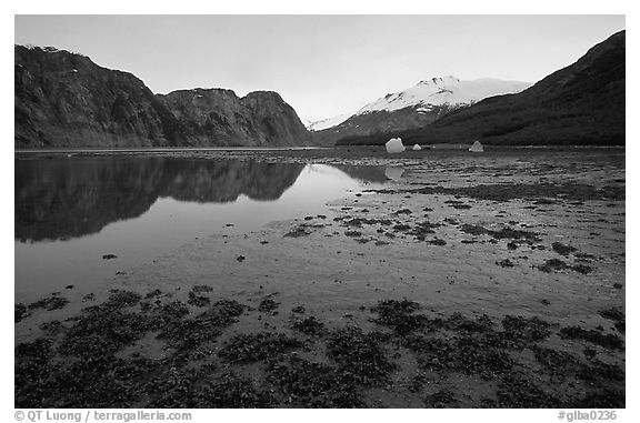 Mud flats above White Thunder ridge, Muir inlet. Glacier Bay National Park (black and white)