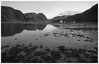Mud flats above White Thunder ridge, Muir inlet. Glacier Bay National Park, Alaska, USA. (black and white)