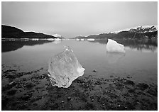 Beached translucent iceberg and Muir inlet at dawn. Glacier Bay National Park, Alaska, USA. (black and white)