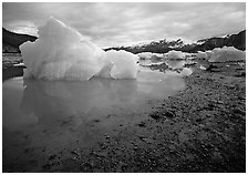 Blue icebergs beached near Mc Bride Glacier. Glacier Bay National Park, Alaska, USA. (black and white)