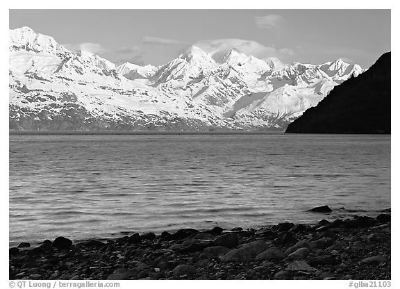 Snowy mountains of Fairweather range and West Arm, morning. Glacier Bay National Park (black and white)