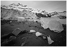 Beach, translucent iceberg, Lamplugh Glacier. Glacier Bay National Park, Alaska, USA. (black and white)