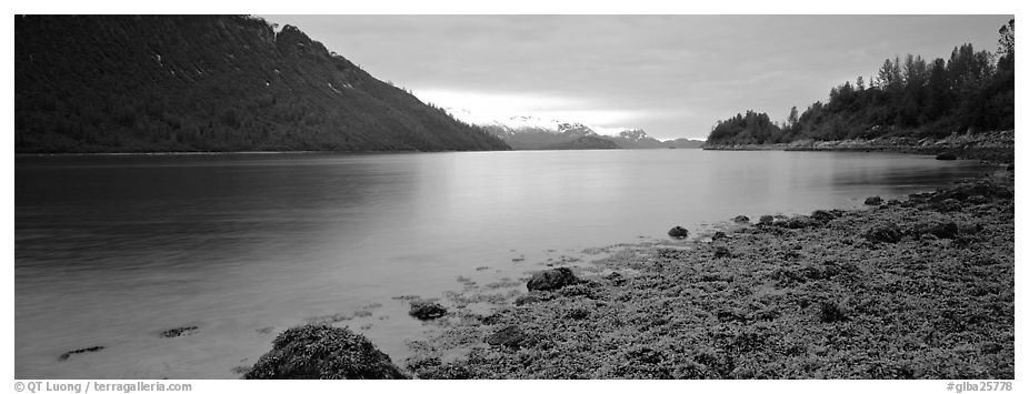 Moss-covered rocks in fjord. Glacier Bay National Park (black and white)