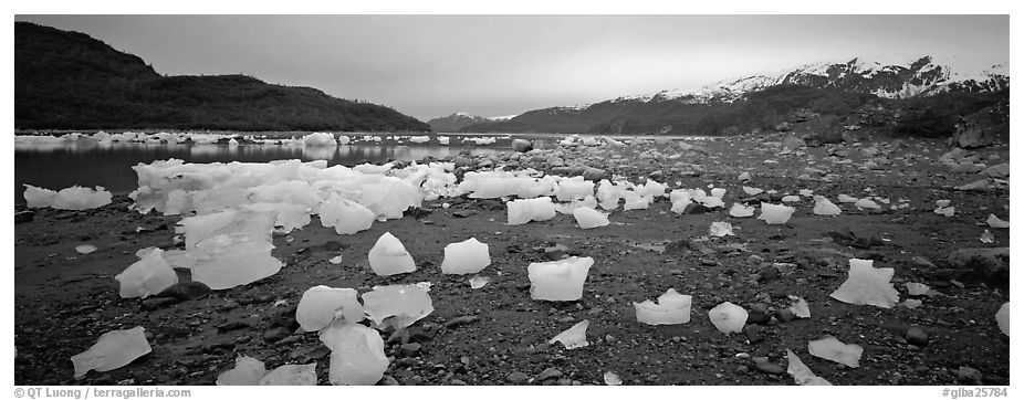 Landscape with beached icebergs. Glacier Bay National Park (black and white)