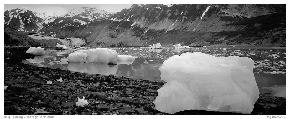 Glacial scenery with icebergs and glacier. Glacier Bay National Park (black and white)