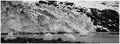 Glacier terminus. Glacier Bay National Park (Panoramic black and white)