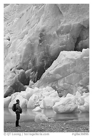 Hiker looking at ice wall at the terminus of Reid Glacier. Glacier Bay National Park (black and white)