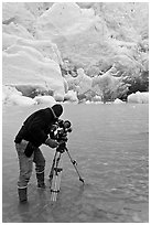 Cameraman standing in water with camera and tripod filming Reid Glacier. Glacier Bay National Park, Alaska, USA. (black and white)