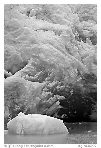 Iceberg and ice cave at the base of Reid Glacier. Glacier Bay National Park (black and white)