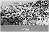 Iceberg and ice face of Lamplugh glacier. Glacier Bay National Park ( black and white)