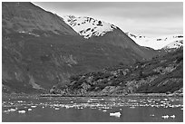 Ice-chocked cove in Tarr Inlet. Glacier Bay National Park, Alaska, USA. (black and white)