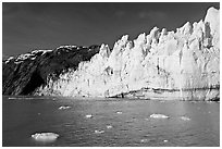 Face of Margerie Glacier on a sunny morning. Glacier Bay National Park, Alaska, USA. (black and white)