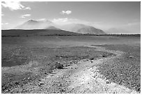 Colorful ash, Valley of Ten Thousand smokes. Katmai National Park, Alaska, USA. (black and white)