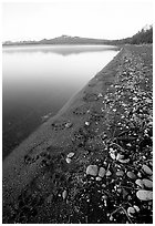 Bear tracks on the shore of Naknek lake. Katmai National Park, Alaska, USA. (black and white)
