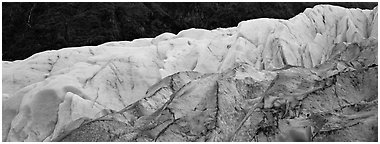 Two ice colors on Exit Glacier. Kenai Fjords  National Park (Panoramic black and white)