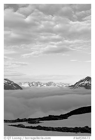 Sea of clouds and craggy peaks. Kenai Fjords National Park (black and white)