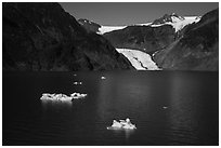 Aerial View of icebergs, Pedersen Lagoon and Glacier. Kenai Fjords National Park ( black and white)