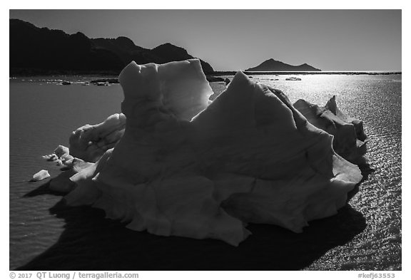 Aerial View of iceberg in Bear Glacier Lagoon. Kenai Fjords National Park (black and white)