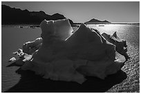 Aerial View of iceberg in Bear Glacier Lagoon. Kenai Fjords National Park ( black and white)