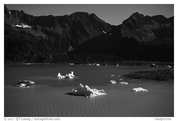 Aerial View of icebergs in Bear Glacier Lagoon. Kenai Fjords National Park (black and white)