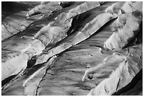 Aerial View of Bear Glacier surface detail. Kenai Fjords National Park ( black and white)