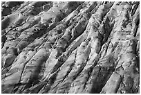 Aerial View of Bear Glacier crevasses. Kenai Fjords National Park ( black and white)