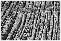 Aerial View of crevassed surface of Bear Glacier. Kenai Fjords National Park ( black and white)