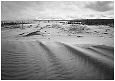 Sand ripples in Arctic dune field. Kobuk Valley National Park, Alaska, USA. (black and white)