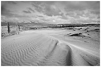 Ripples in the Great Sand Dunes. Kobuk Valley National Park, Alaska, USA. (black and white)