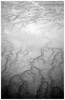 Aerial view of mud flat dendritic pattern on Cook inlet. Lake Clark National Park, Alaska, USA. (black and white)