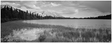 Reeds, pond, and mountains with open horizon. Wrangell-St Elias National Park, Alaska, USA. (black and white)