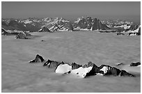 Aerial view of peaks emerging from sea of clouds, St Elias range. Wrangell-St Elias National Park, Alaska, USA. (black and white)