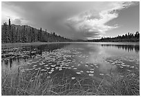 Crystal Lake with starting afternoon shower. Wrangell-St Elias National Park, Alaska, USA. (black and white)