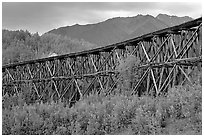 Historic Railroad trestle crossing valley. Wrangell-St Elias National Park, Alaska, USA. (black and white)