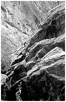 Rocks in Santa Elena Canyon. Big Bend National Park ( black and white)