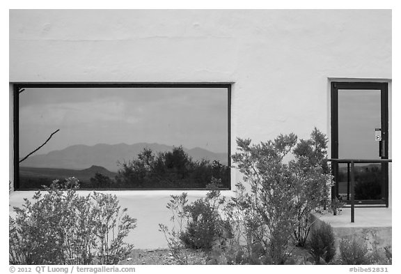 Shrubs, Chisos mountains, Persimmon Gap Visitor Center window reflexion. Big Bend National Park (black and white)