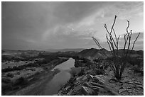 Ocotillo and Rio Grande Wild and Scenic River. Big Bend National Park, Texas, USA. (black and white)