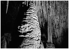 Large stalagmite column and thin stalagtites. Carlsbad Caverns National Park, New Mexico, USA. (black and white)
