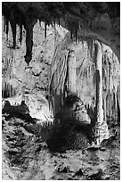 Calcite speleotherms and soda straws, Painted Grotto. Carlsbad Caverns National Park ( black and white)