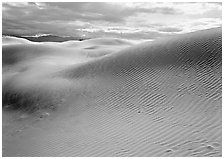 Sensuous dune forms. Death Valley National Park, California, USA. (black and white)