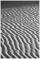 Close-up of Sand ripples, sunrise. Death Valley National Park, California, USA. (black and white)