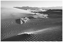 Depression in dunes with sand ripples, Mesquite Sand Dunes, early morning. Death Valley National Park, California, USA. (black and white)