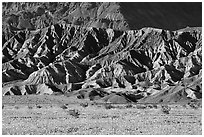 Yellow wildflowers and buttes, late afternoon. Death Valley National Park ( black and white)