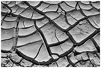 Mud cracks. Death Valley National Park ( black and white)