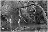 Desert Oasis with Darwin Falls. Death Valley National Park, California, USA. (black and white)