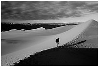 Hiking towards tall dune, the Mesquite Dunes, sunrise. Death Valley National Park, California, USA. (black and white)