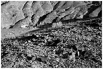 Backcountry camping. Death Valley National Park, California, USA. (black and white)