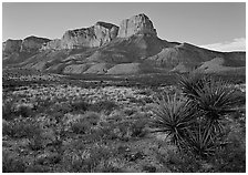 El Capitan from Williams Ranch road, sunset. Guadalupe Mountains National Park, Texas, USA. (black and white)